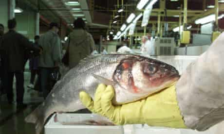 fish Inside Billingsgate