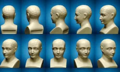 A bust of a phrenology head with fifteen different positions