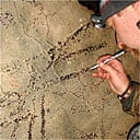 Adam Stanford, archaeologist, examing the Barclodiad y Gawres passage grave on Anglesey