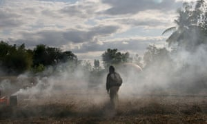 Primitive, a video installation by Apichatpong Weerasethakul