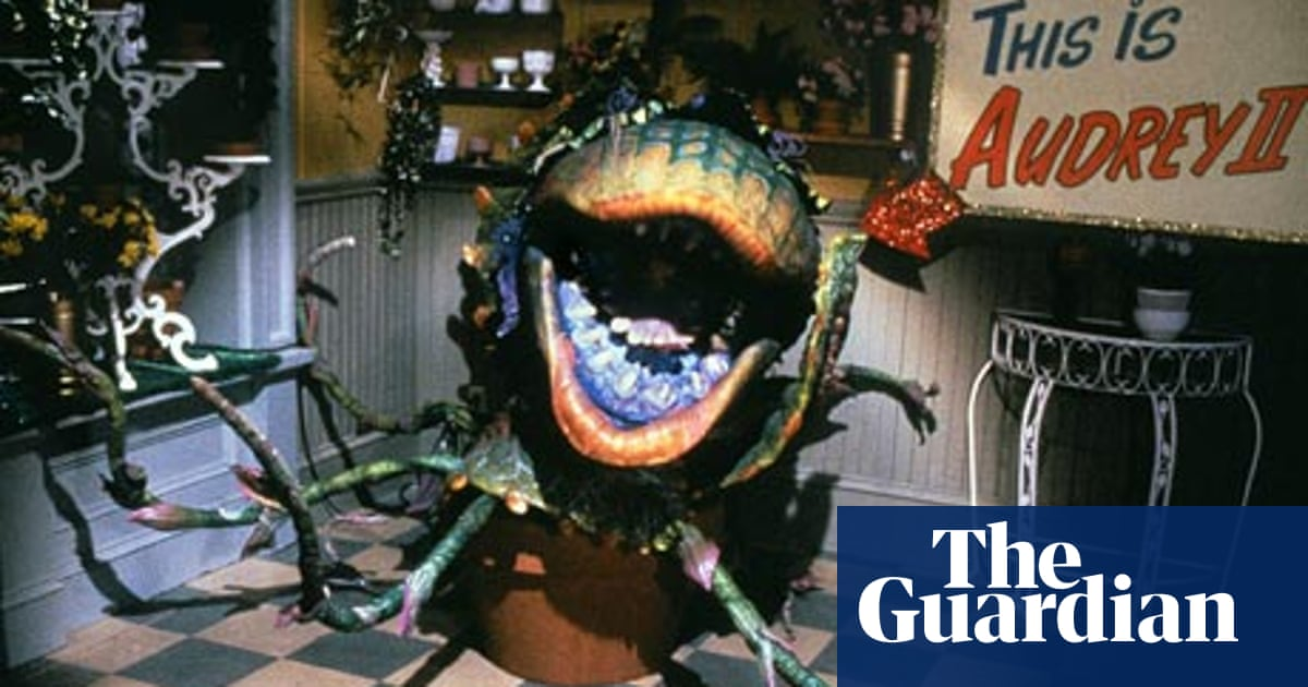 My favourite film: Little Shop of Horrors   Film   The Guardian
