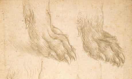 Leonardo da Vinci's Studies of a dog's paw, about 1485.