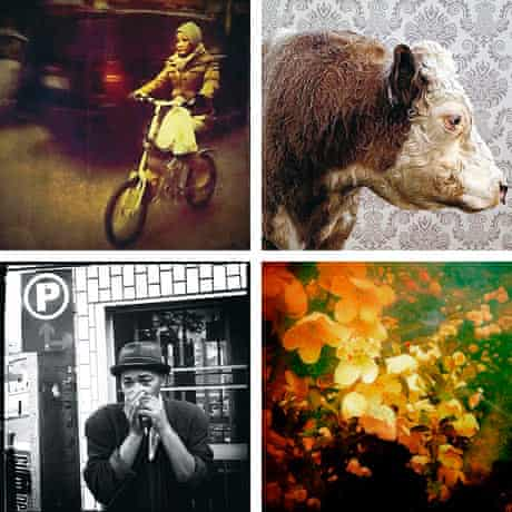 A selection of images taken by mobile photgraphers and artists