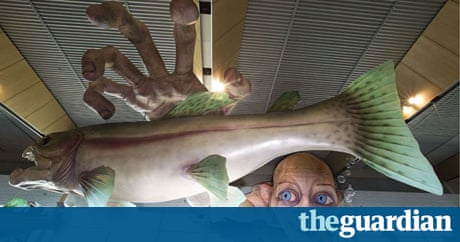 Hobbit Animal Abuse Claims Warner Bros Backs Peter Jackson Film - Sad production hobbit reveals something never imagine