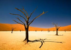 Bernard Pieterse's 2012 Sony world photography award winner – a shot of South Africa