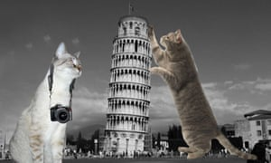 LOLCats and architecture - Leaning Tower of Pisa