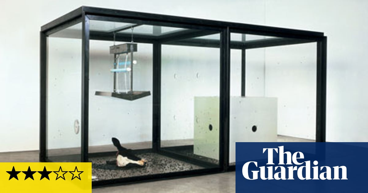 Damien Hirst Review Damien Hirst The Guardian