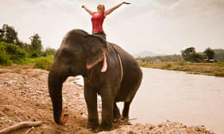 Woman riding elephant in Thailand