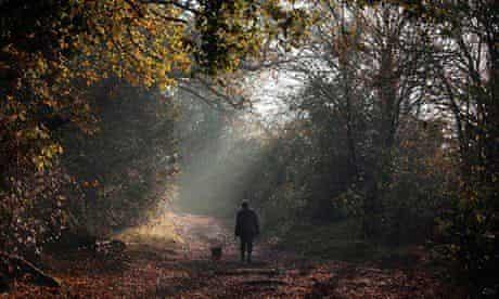 hoxne suffolk in autumn