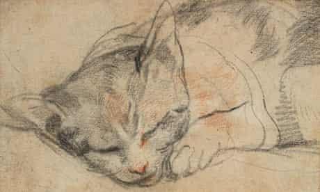 Study For A Cat....Federico Barocci