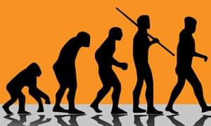 evolution illustration. Image shot 2008. Exact date unknown.