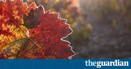 essay on to autumn by john keats