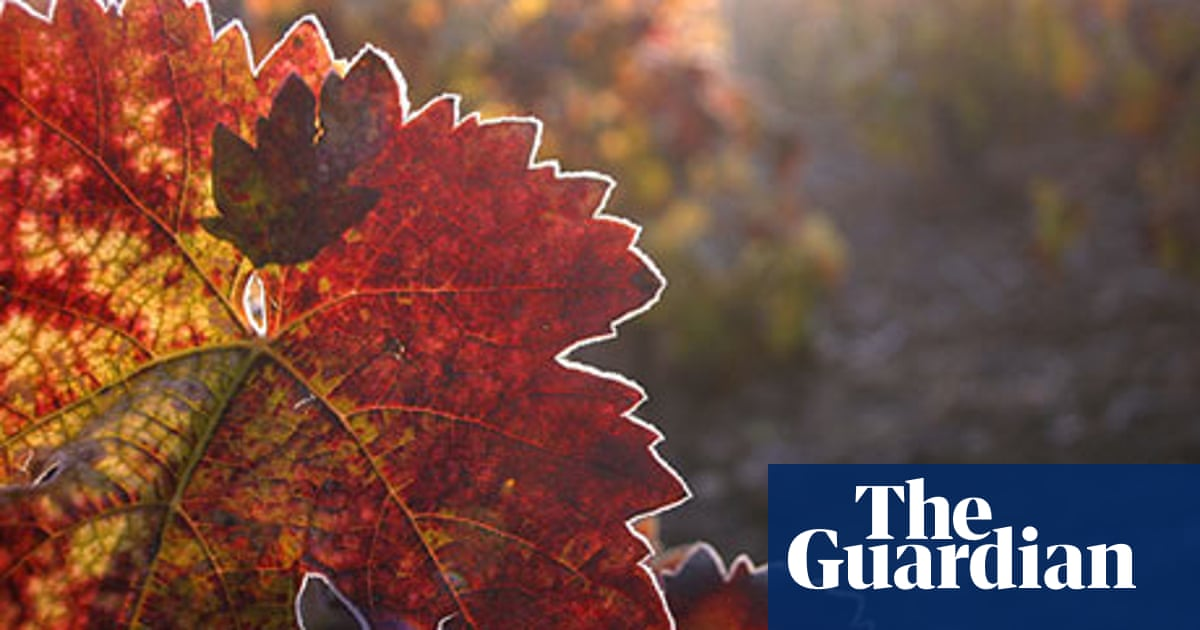 Poem of the week: To Autumn by John Keats | Books | The Guardian