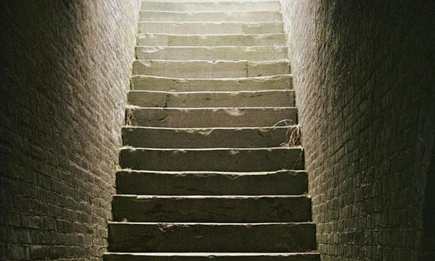 Výsledek obrázku pro cellar