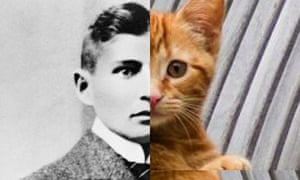 Franz Kafka's Meowmorphosis