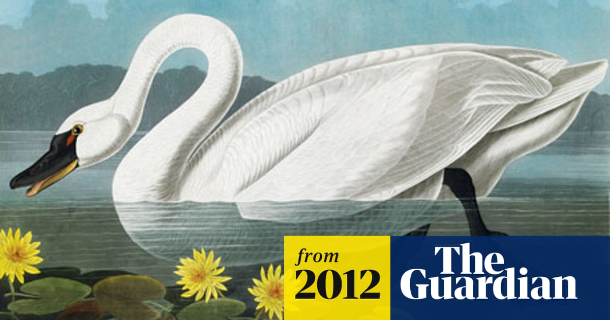 World's most expensive book, Birds of America, set to fetch