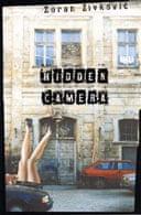Hidden Camera by Zoran Zivkovic