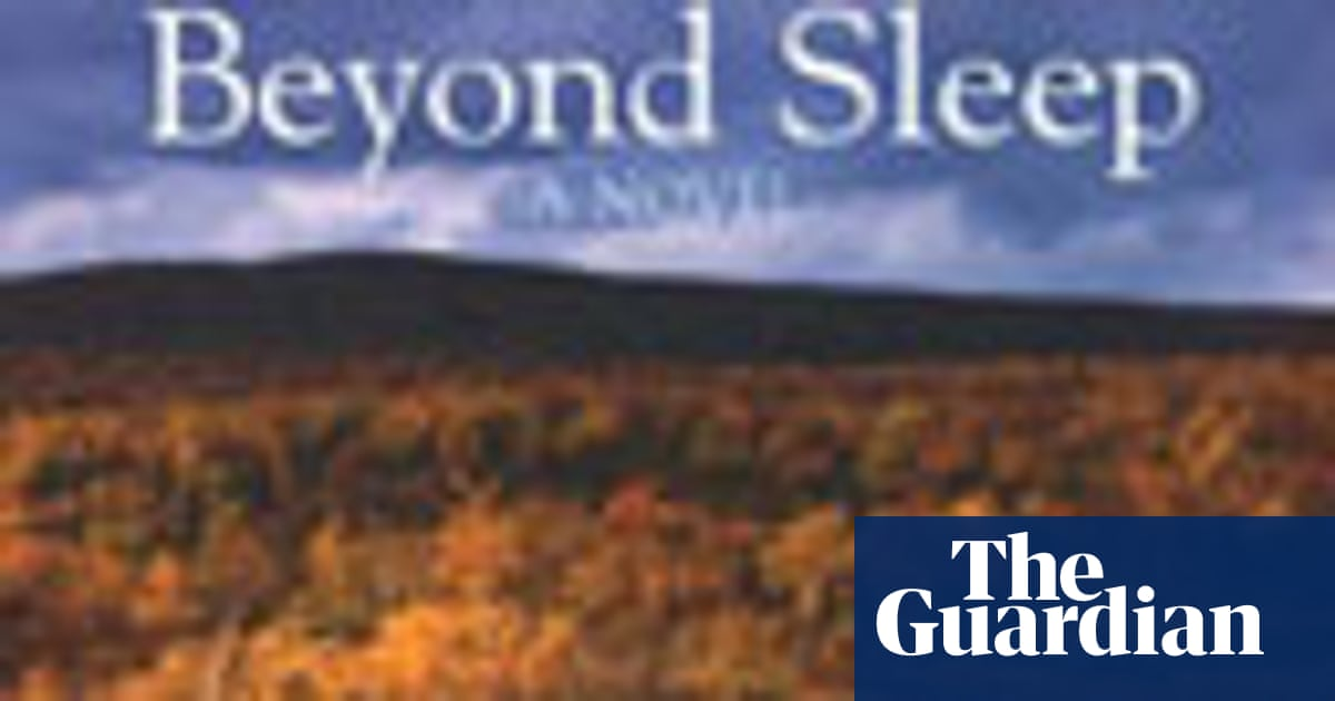 Review Beyond Sleep By Wf Hermans Books The Guardian