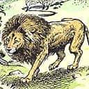 Narnia (Aslan)