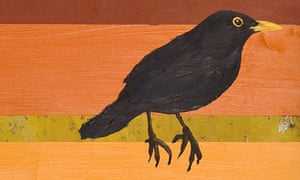 At least thirteen ways of looking at a blackbird
