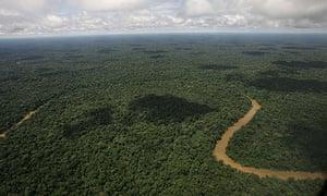 Yasuni National Park, in Ecuador's northeastern jungle