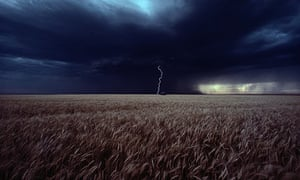 Lightning flashes over a Kansas wheat field.