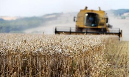 Eco-farming rules