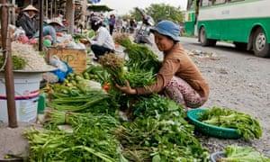 vegetables vietnam