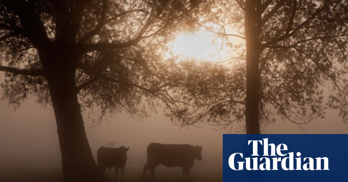 The Colour of Milk by Nell Leyshon – review | Books | The Guardian