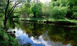 River Dart in Devon