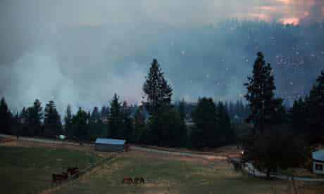 'Sad man fiction' … wildfire burns out of control along highway 97C near Peachland, British Columbia