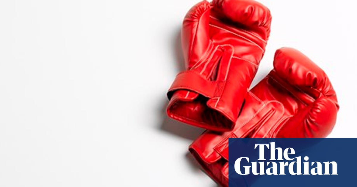 Boxer Handsome by Anna Whitwham – review | Books | The Guardian