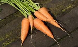 Grown carrots