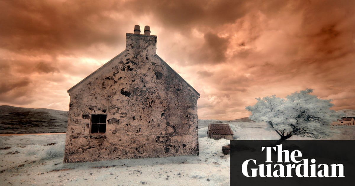 The Dogs by Allan Stratton review – a permanent state of dread