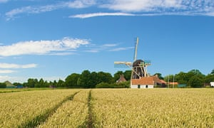 A small, quiet canvas … a farm in the Netherlands.