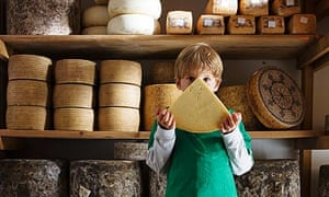 cheddar cheese - irish government to hand out free cheddar