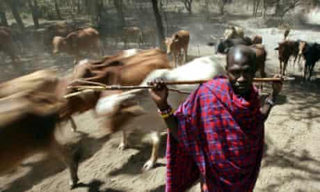 Maasai tribesman