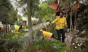Final preparations for the opening of the Royal Horticultural Society's Chelsea Flower Show 2013