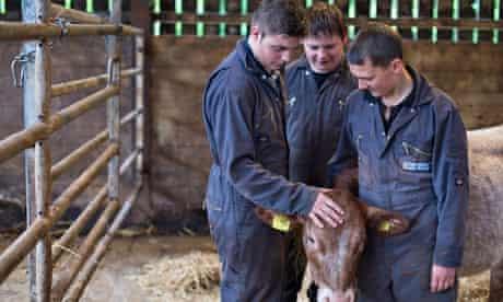 Brymore farm school