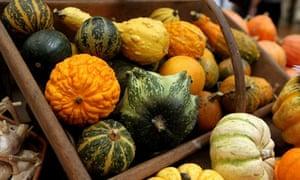 Autumn harvest show