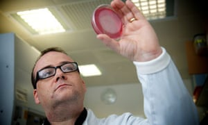 Martyn Amos: 'I want to build a bacterial brain in a dish'