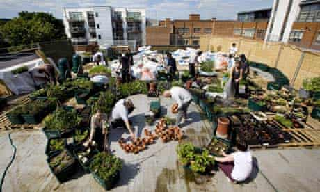 Volunteers help to set up an edible organic community garden space on the roof of a supermarket
