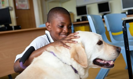 Bwembya Manda meets labrador Angel on one of her weekly visits to Hendon school