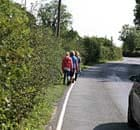 Children walk to school on country road