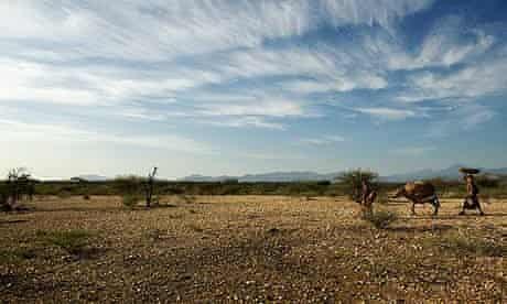 COP15 Drought in Kenya : Turkana pastoralist women are migrating in the area of Lorengippi
