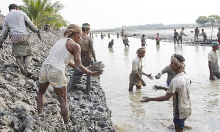 Climate change and rising sea in Bangladesh : Villagers  repair the embankment, Koira sub-district