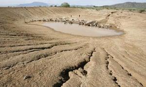 COP15 3C Environmental Destruction Threatens Kenya