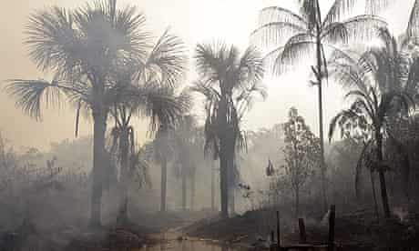 COP15 : REDD Deforestation and drought : The Amazon forest burns next to the city of Mandaquiri.