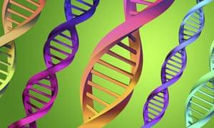 3D representation of DNA strands