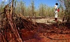Deepwater Horison oil spill, coast of Louisiana